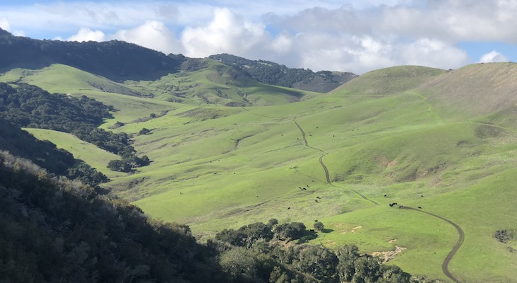 Land Trust Brings New Funding to Conserve 1,000 Acre Jalama Canyon Ranch title=