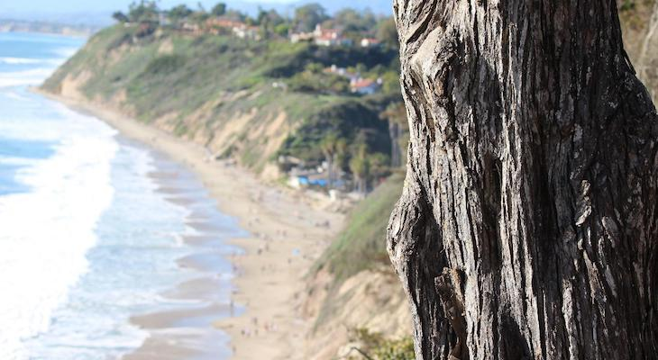 Santa Barbara County Makes Best and Worst Beach Report List