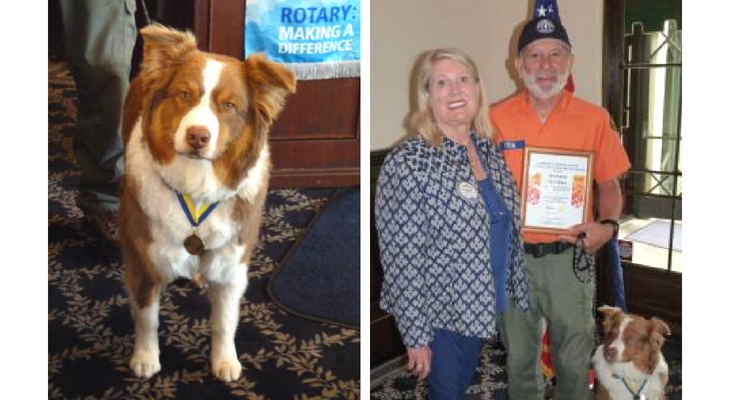 K9 Rescue Team Honored for Montecito Mudslide Efforts title=
