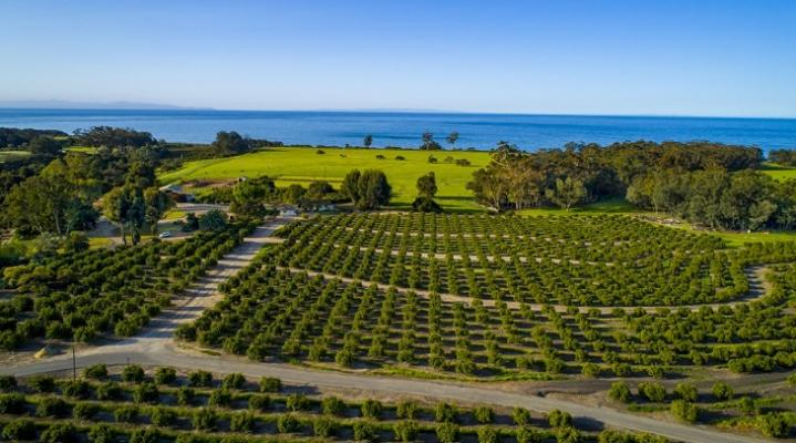 UCSB Receives 1,800 Acre Donation