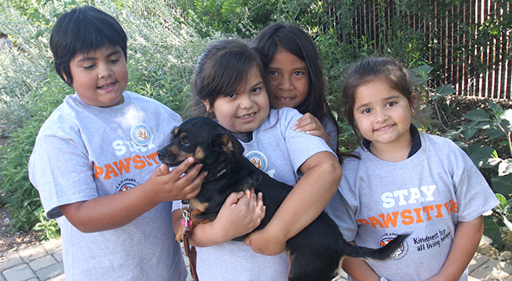 C.A.R.E.4Paws Grows its Youth Program and Awards 150 Paws Up for Pets