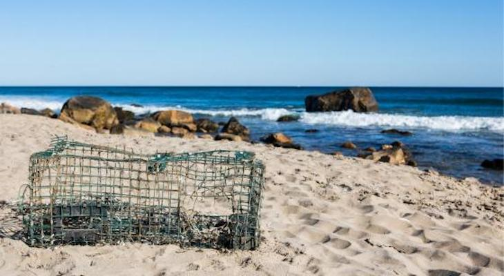 Channelkeeper to Remove Derelict Lobster Traps from Beaches