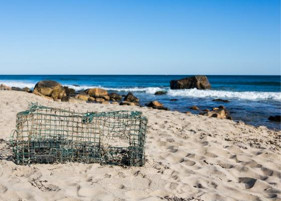 Derelict fishing gear like this lobster trap can pose dangers to wildlife, vessels, and people. Marine debris is a serious environmental problem. title=