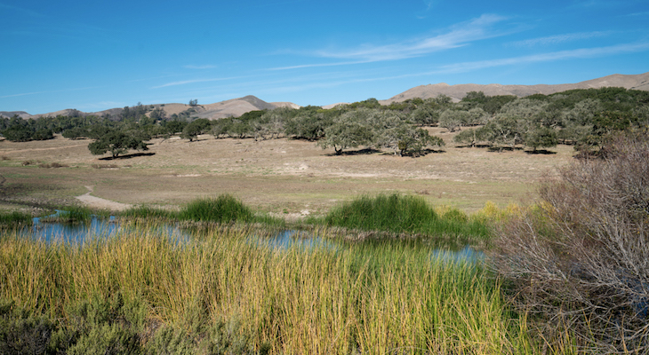 Land Trust Conservation on Lompoc Farm Receives State Funds title=