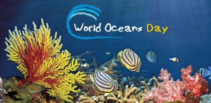 Happy World Oceans Day! title=