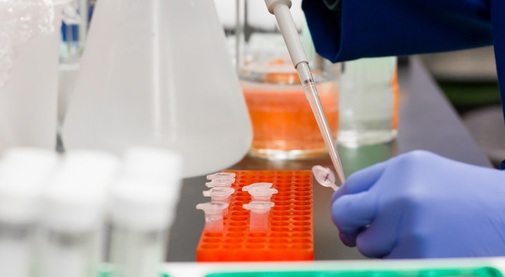 Identifying the Novel Coronavirus