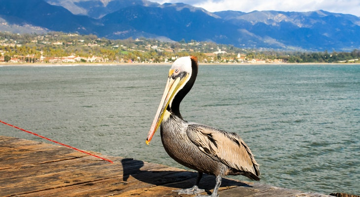 Santa Barbara Named Top Small City Destination