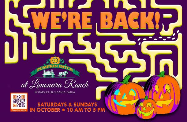 Pumpkin Patch at Limoneira Ranch welcomes visitors again this fall title=