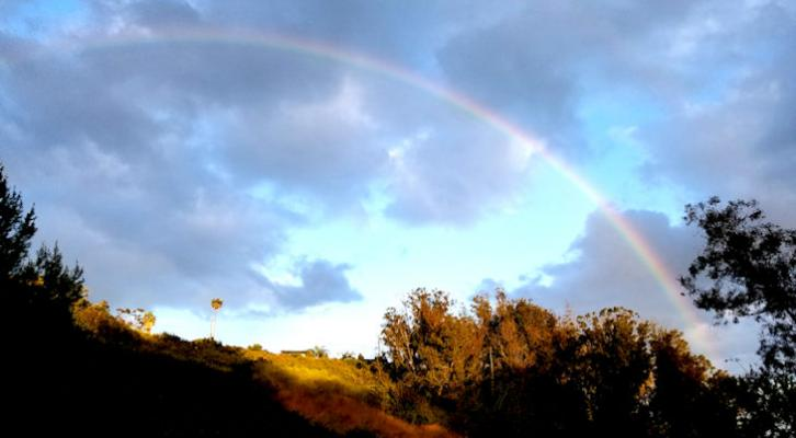 Rainbows and Sunrises title=
