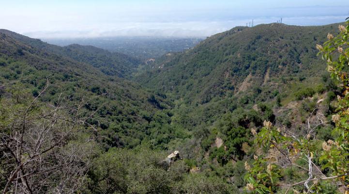 Tangerine Falls/Lookout/Homestead Sierra Club Hike