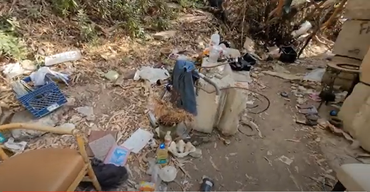 Heal the Ocean Hires Earthcomb to Initiate Homeless Job Program