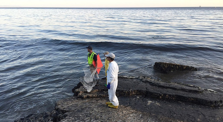 Guilty Verdicts Announced in Refugio Oil Spill Criminal Trial title=