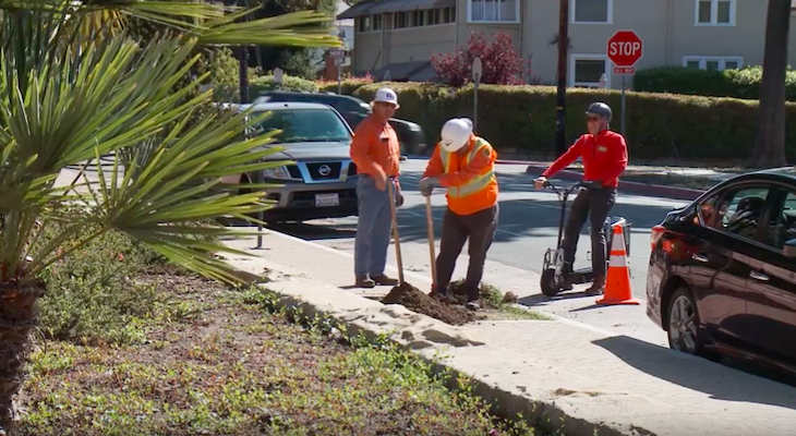 Santa Barbara Beautiful Street Tree Planting