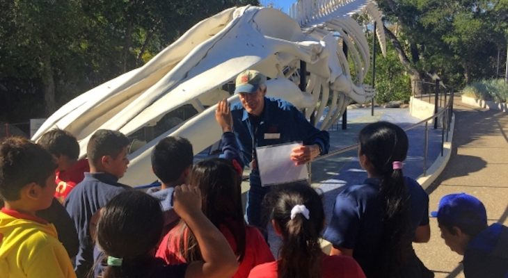 Museum of Natural History Seeks Naturally Curious Docents