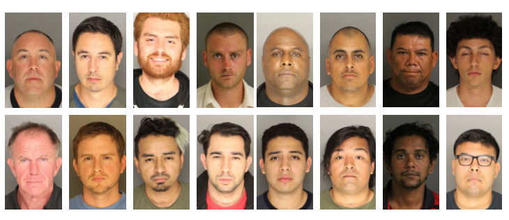 17 Arrested in Undercover Prostitution Sting