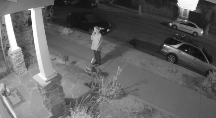 Package Thief Caught on Camera title=
