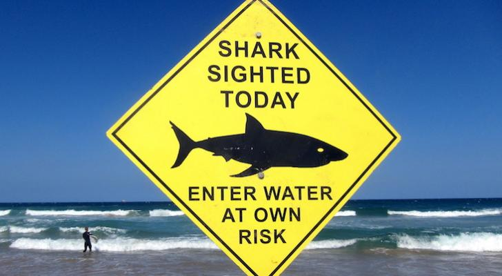 Two Shark Attacks Reported on Thursday Morning title=