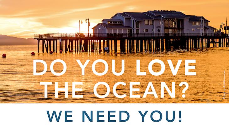 Volunteer at the Santa Barbara Museum of Natural History Sea Center title=