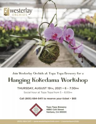 Join Westerlay Orchids at Topa Topa Brewery for a Hanging Kokedama Workshop title=