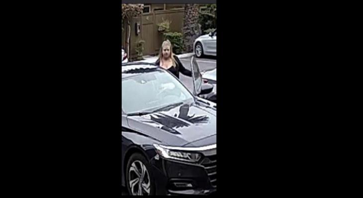 Vandalism Suspect Caught on Camera