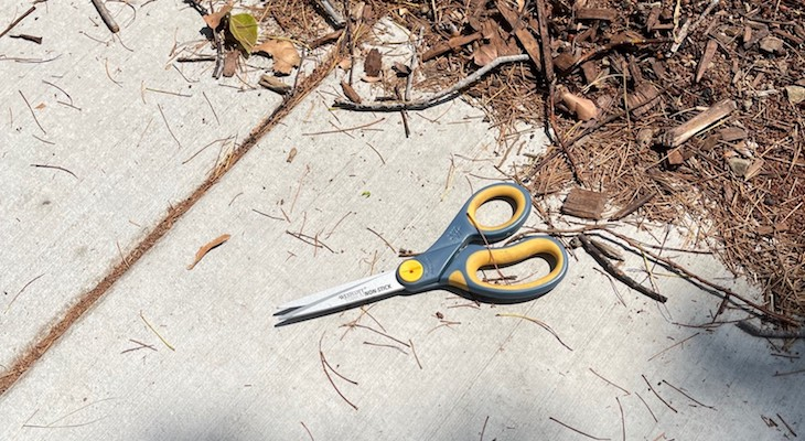 Fixed-blade weapon determined to be scissors (courtesy photo)