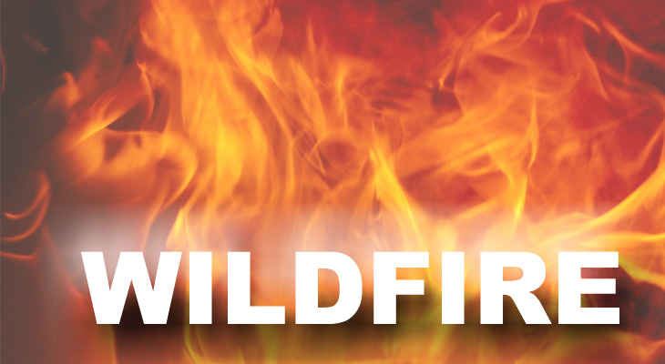 Brush Fire Extinguished Along Highway 101 title=