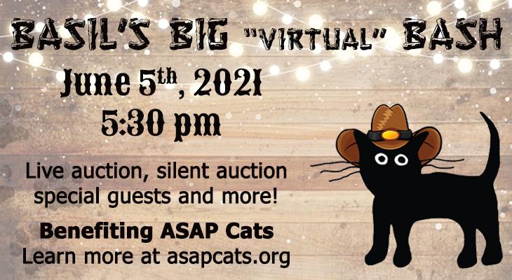 ASAP Cats: Basil's Big Virtual Bash