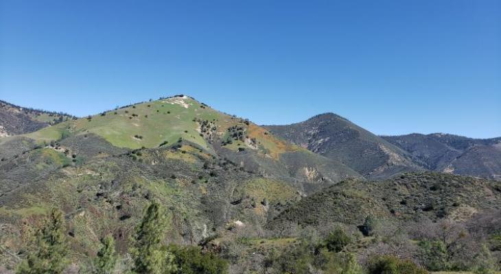 Figueroa Mountain Views