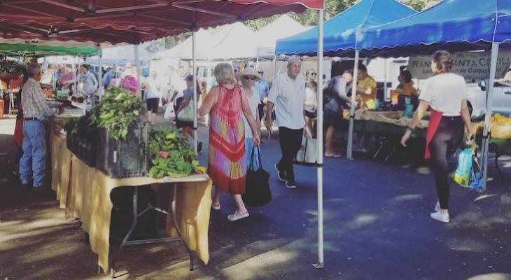 Farmer's Market Listening Workshop
