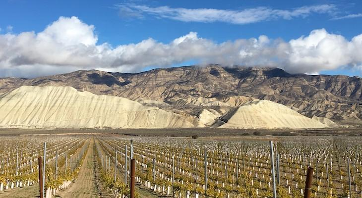 """State Knocks """"Deficiencies"""" in Cuyama Valley Groundwater Plan"""