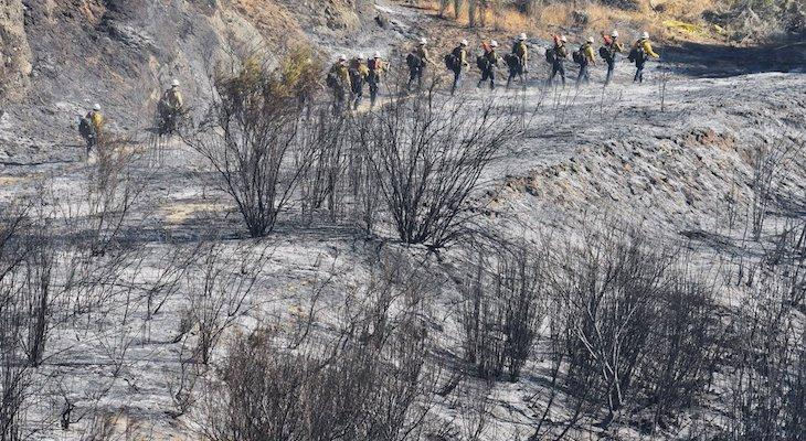 Front Fire Reaches 1,000 Acres and Growing