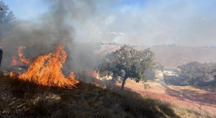 Caballo Fire Caused by Propane Torch