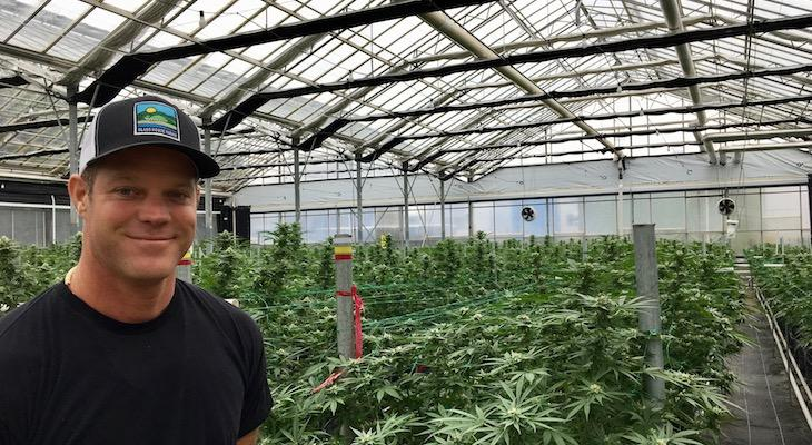 Commercial Sprayers Pull Out of Carpinteria Cannabis Deal