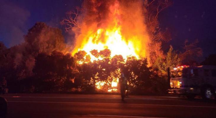 Multiple Brush Fires Near Homeless Camp on Highway 101 in Goleta