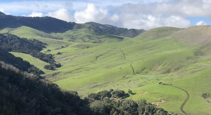 Land Trust Brings New Funding to Conserve 1,000 Acre Jalama Canyon Ranch