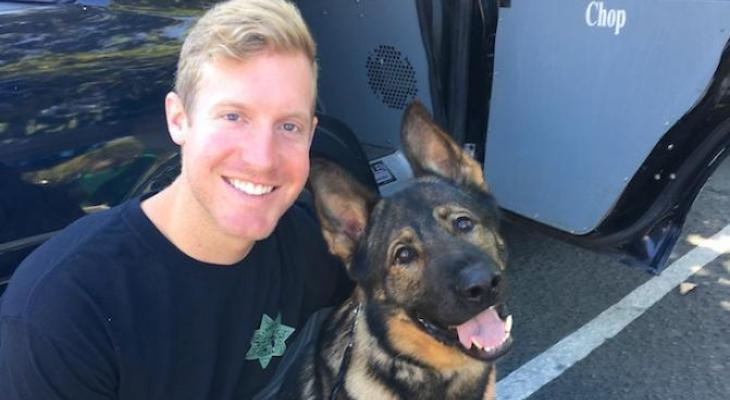 Sheriff K9 Chop Dies in Medical Emergency