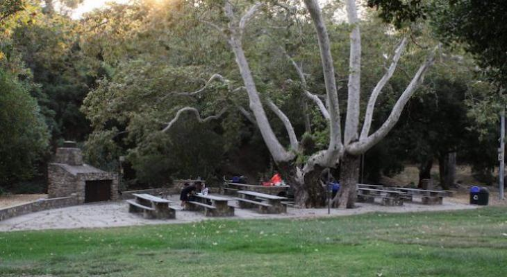 Santa Barbara City Picnic Sites Closed