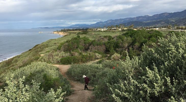 City of Carpinteria Will Take Over Rincon Bluffs Preserve