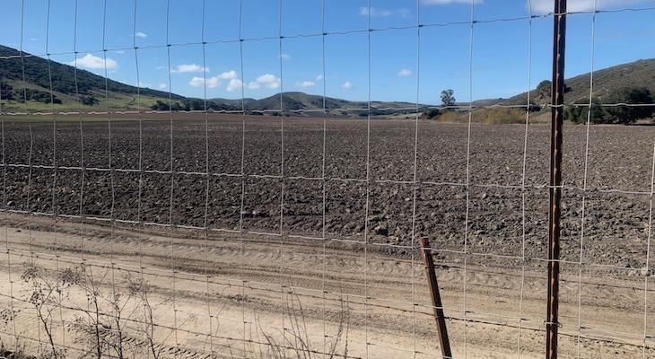 "County Approves ""Gargantuan"" Cannabis ""Grow"" for the Sta. Rita Hills"