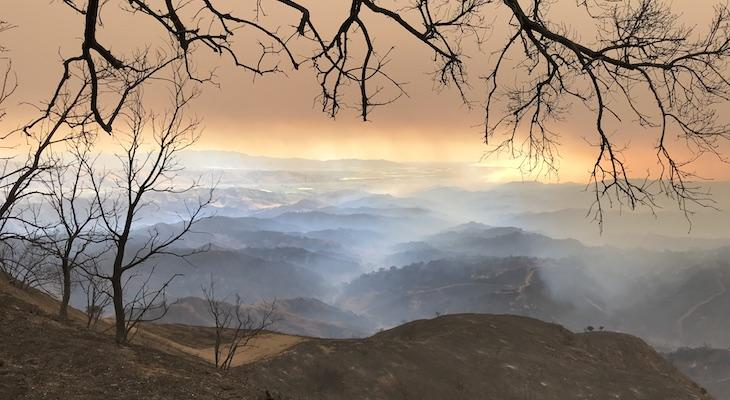 Ranchers Sue SoCal Edison Following Thomas Fire