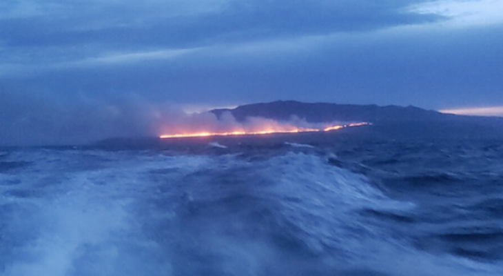 Santa Cruz Island Brush Fire Reaches 700 Acres
