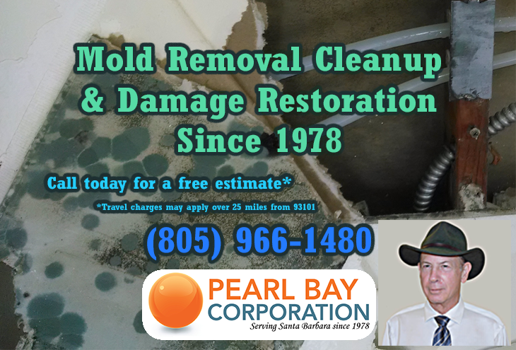 Mold removal remediation & damage restoration. Free Estimates, call 805-966-1480