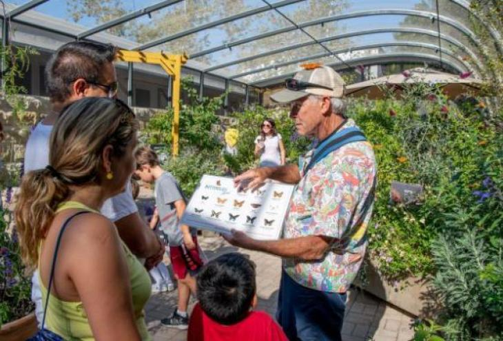 Butterfly Pavilion Volunteers Wanted at SB Museum of Natural History